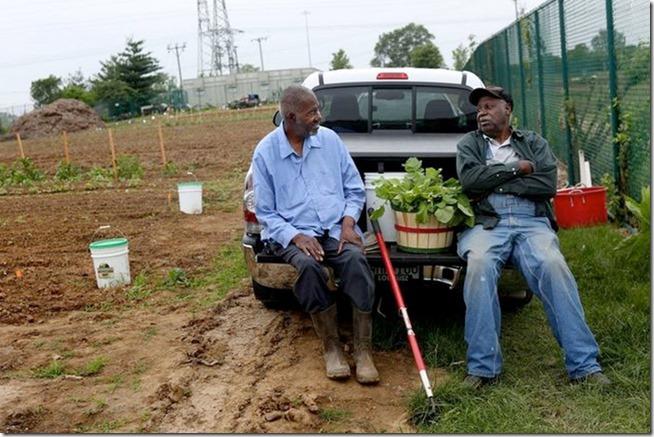 Фермеры-01-1200x800-Фото-Laurie-Skrivan,[1]